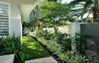 灌木丛设计