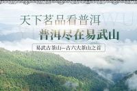 滇润祥茶业