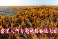 新疆途游西域国际旅行社