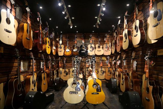 琴行乐器专卖店,琴行乐器销售